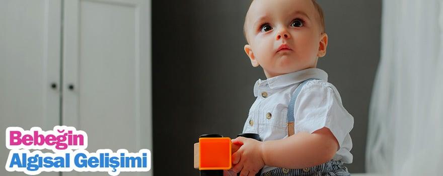 Bebeklerde Algısal Gelişim